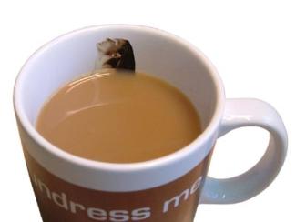 Undressme_mug_female_full__2