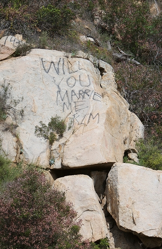 Will_you_marry_me